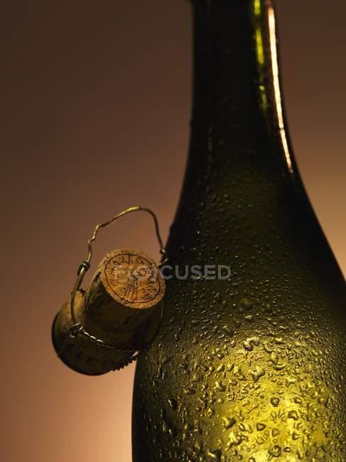 Garrafa de champanhe com cortiça — Fotografia de Stock