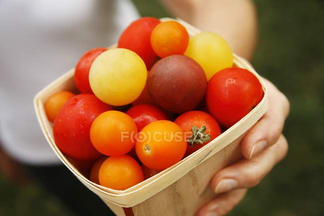 Wooden Carton of Heirloom Tomatoes — Stock Photo