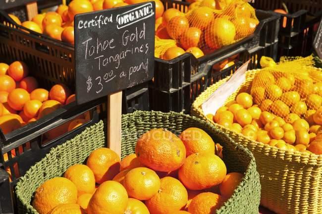 Oranges et des mandarines biologiques — Photo de stock