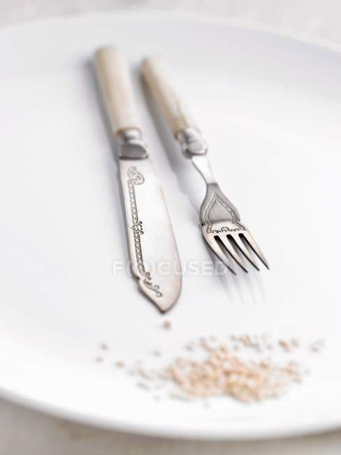 Closeup view of ornate kitchen knife and fork on white plate — Stock Photo