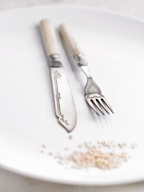 Primo piano vista di coltello da cucina ornato e forchetta su piatto bianco — Foto stock