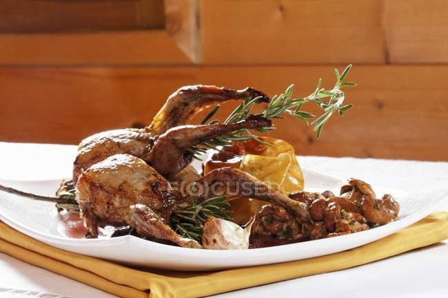 Closeup view of roast quail with chanterelle mushrooms — Stock Photo