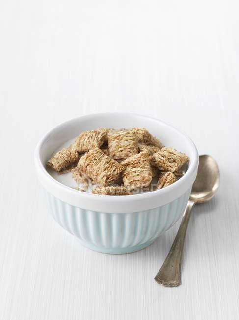 Muesli con leche y trigo triturado - foto de stock