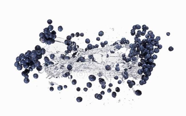 Bleuets par éclaboussure de l'eau — Photo de stock