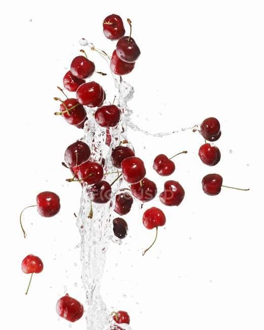 Cerezas con salpicaduras de agua - foto de stock