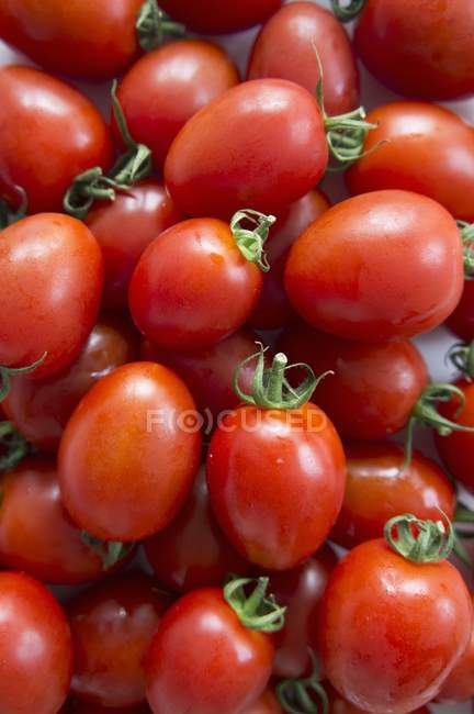 Ripe red Roma tomatoes — Stock Photo