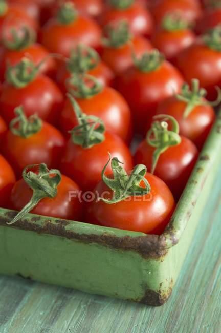 Ящик из томатов рома — стоковое фото