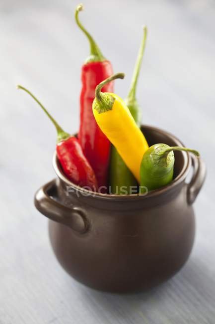 Fresh chilli peppers in pot — Stock Photo