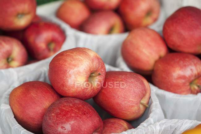Fresh Orchard Red Apples — Stock Photo
