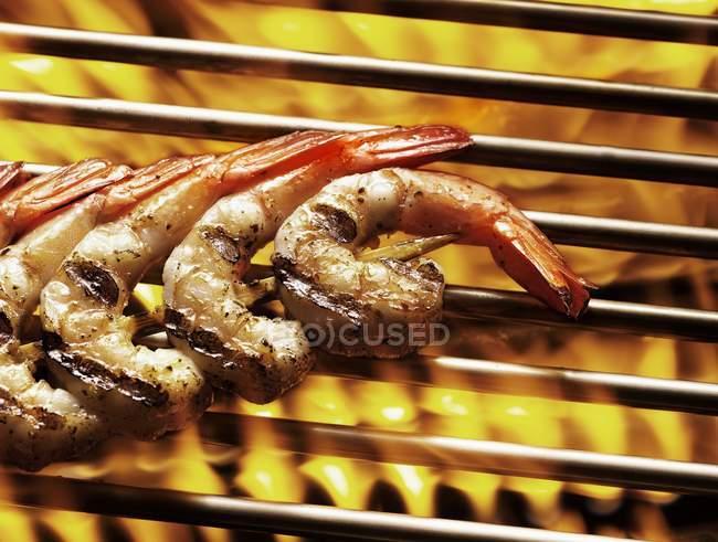 Нанизанные креветки на гриле — стоковое фото