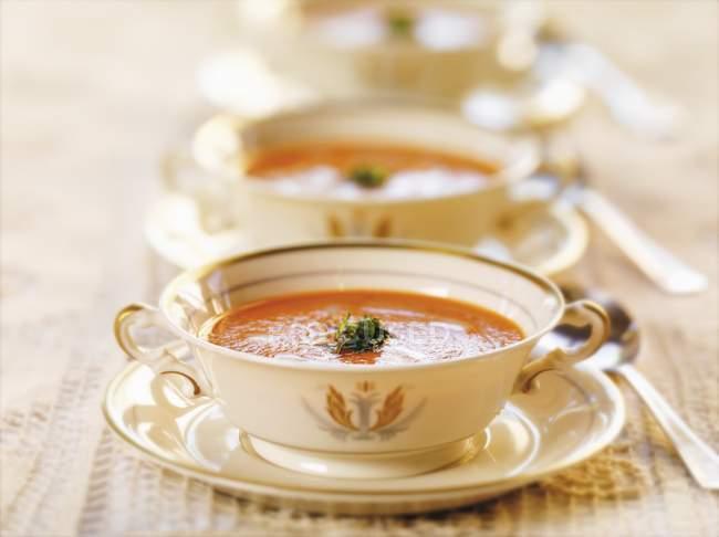 Soupe de tomates et basilic — Photo de stock