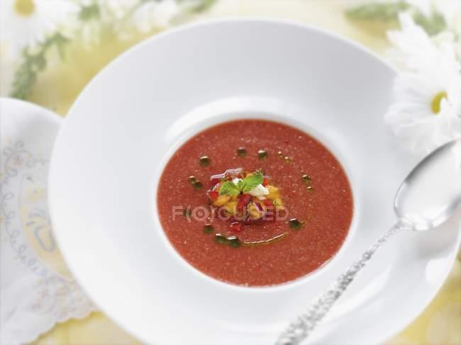 Bowl of Gazpacho Soup — Stock Photo