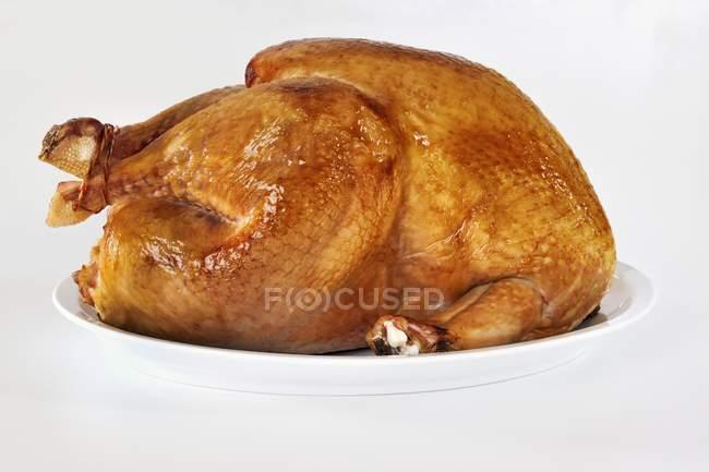 Whole Roasted turkey — Stock Photo