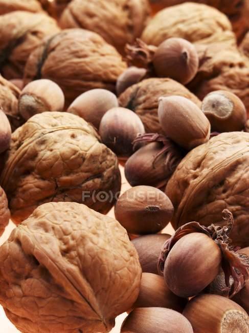 Heap of Walnuts and hazelnuts — Stock Photo