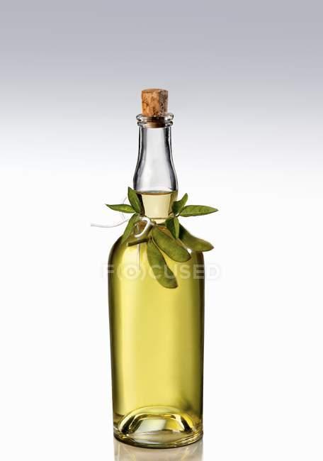 Uma garrafa de óleo de soja sobre fundo branco — Fotografia de Stock