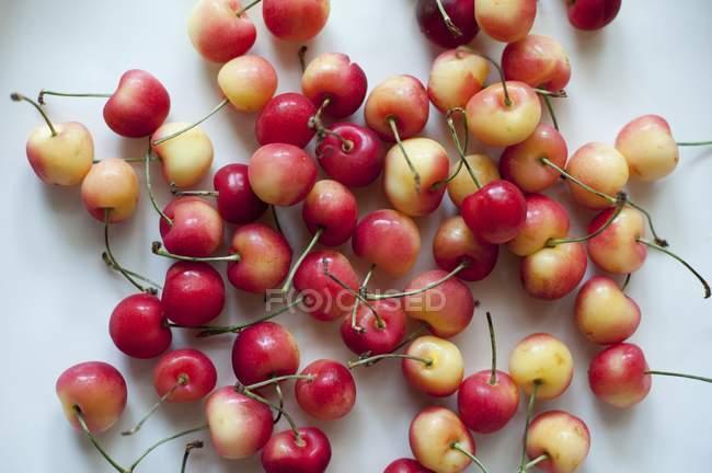 Fresh Rainier Cherries — Stock Photo
