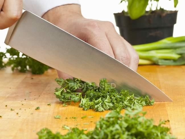 Homem cortando salsa encaracolado — Fotografia de Stock
