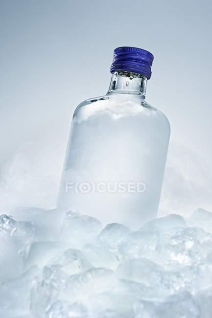 Vodka bottle between ice cubes — Stock Photo