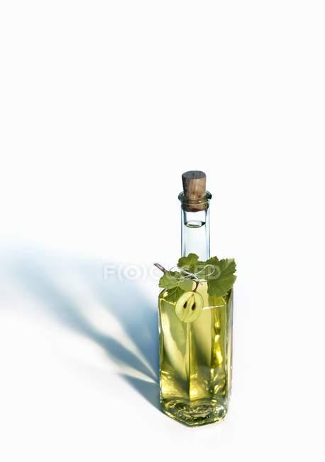 Vue surélevée de l'huile de pépins de raisin en bouteille sur surface blanche — Photo de stock