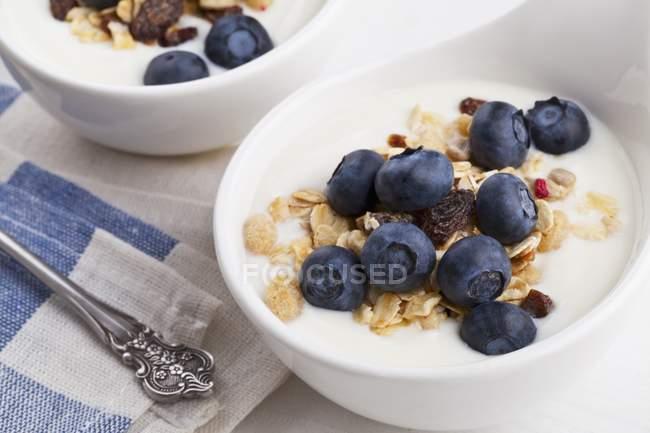 Yogurt con cereales y arándanos - foto de stock