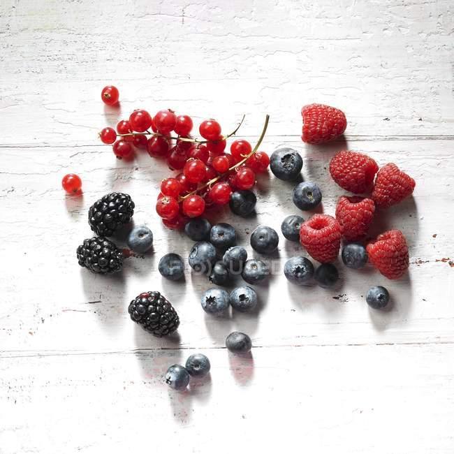 Bacche estive mature fresche — Foto stock