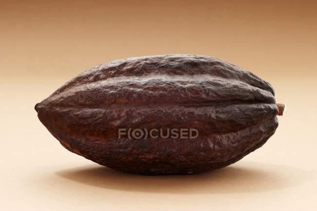 Fruta fresca de cacao - foto de stock