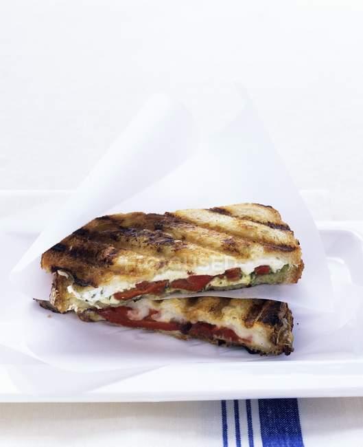 Підсмажений сир моцарелла бутерброди — стокове фото