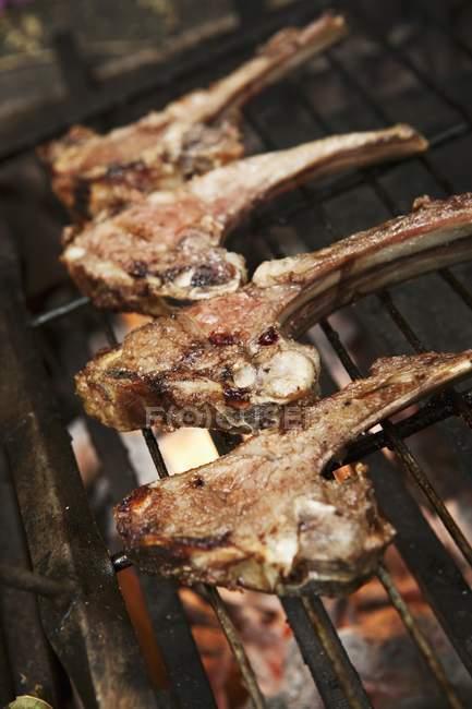 Бараньи ребрышки барбекю стойки — стоковое фото