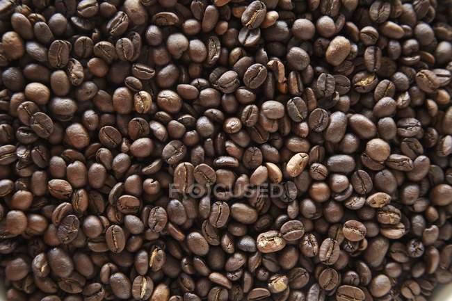 Жареный кофе в зернах — стоковое фото
