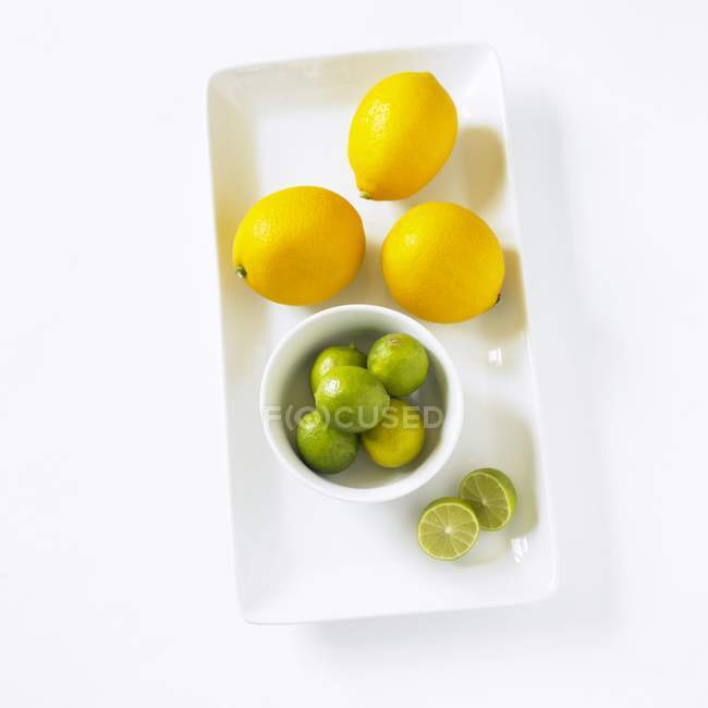 Key Limes and Meyer Lemons — Stock Photo