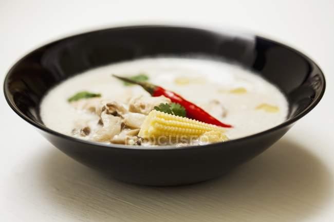 Thailändisches Huhn und Kokossuppe — Stockfoto