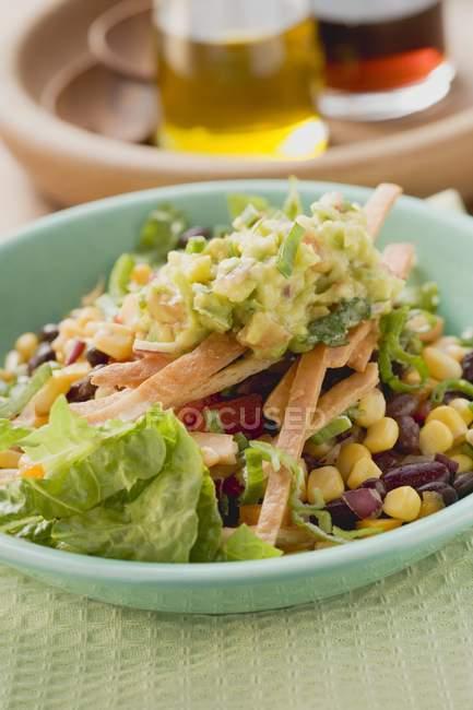 Lattuga, fagioli, mais dolce, strisce di tortilla e guacamole sulla zolla verde — Foto stock