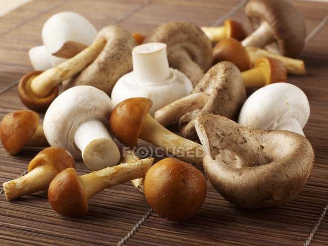 Fresh Button and oriental mushrooms — Stock Photo