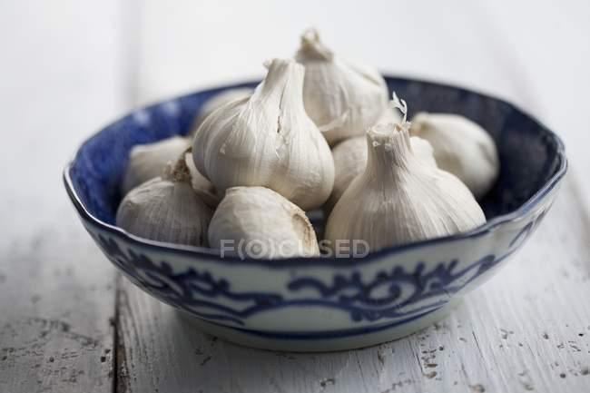 Bulbos de ajo frescos - foto de stock