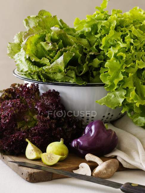 Fresh Salad Ingredients with Lettuce — Stock Photo