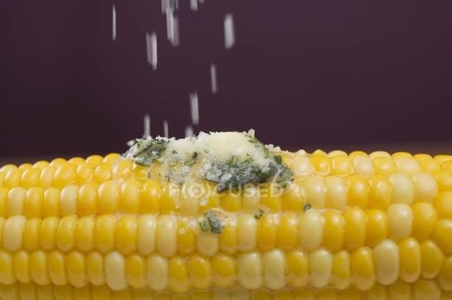 Sprinkling salt on corn — Stock Photo