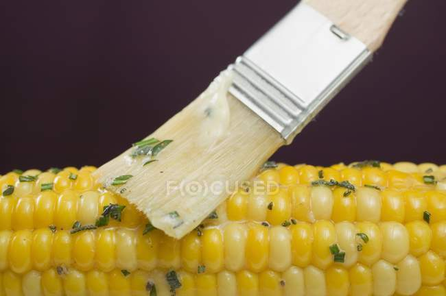 Brushing corn with herb butter — Stock Photo