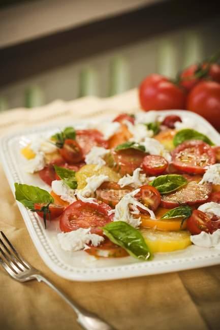 Салат с помидорами — стоковое фото