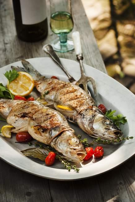 Peixe Branzino recheado grelhado inteiro — Fotografia de Stock