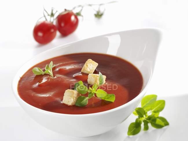 Томатний соус з грінками та базиліком в білий блюдо — стокове фото
