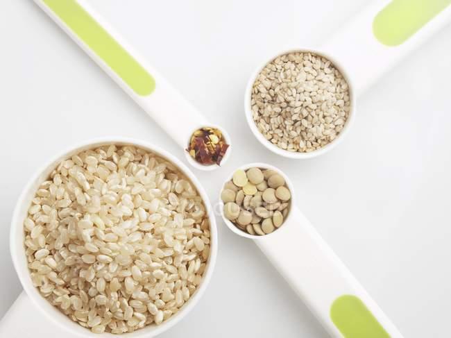 Reis und Sesam — Stockfoto