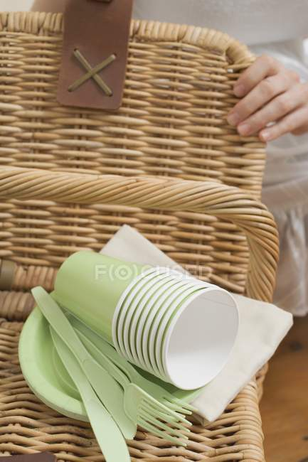 Cropped view of woman with picnic basket and picnicware — Stock Photo