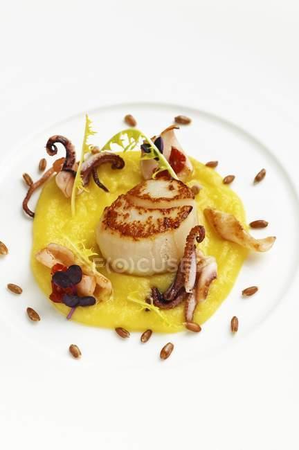Primo piano vista di capesante fritte e calamari sulla crema di olive — Foto stock