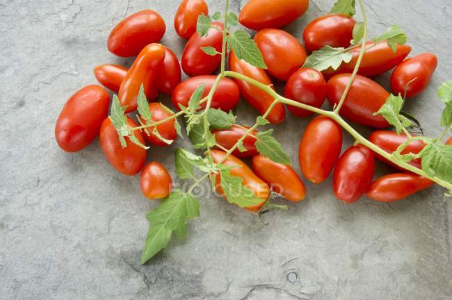 Plum tomatoes with leaves — Stock Photo