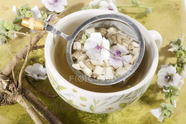 Malva di palude tè alla radice — Foto stock