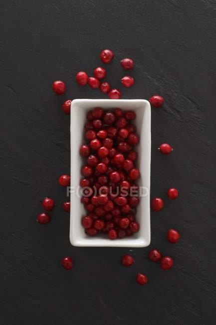 Lingonberries frescos em prato branco — Fotografia de Stock