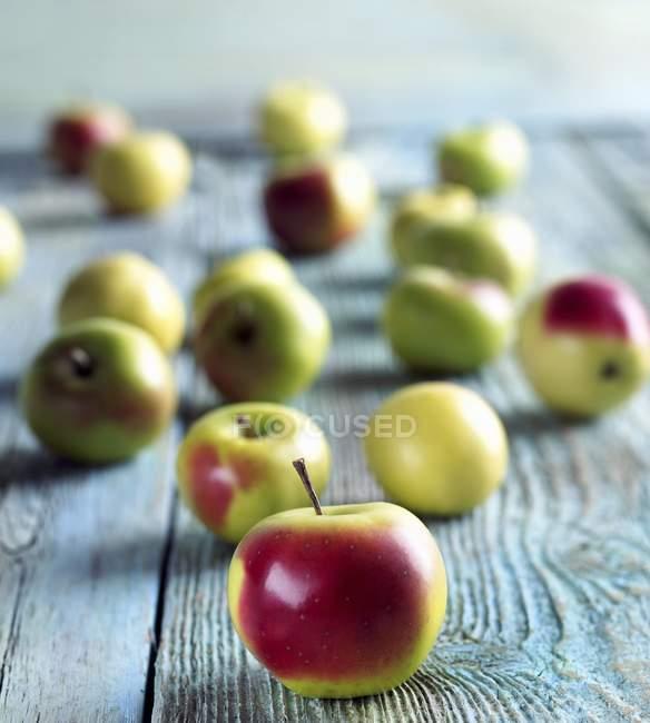 Fresh Crab Apples — Stock Photo