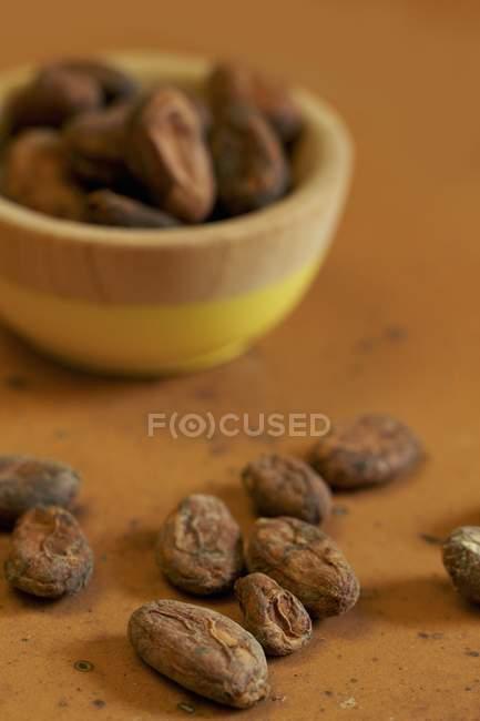 Cacao crudo en grano - foto de stock