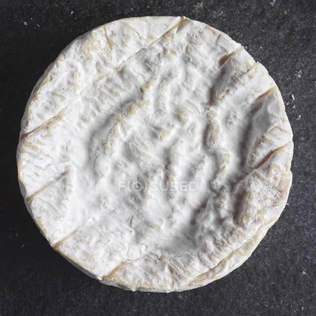 Runde Camembert-sheece — Stockfoto