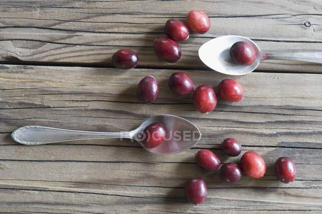 Fresh Cranberries and spoons — Stock Photo